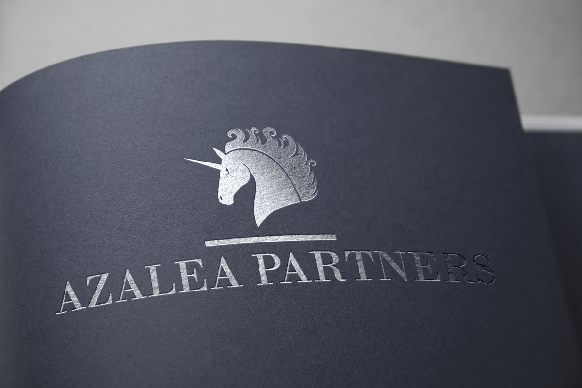 Logo Design for Financial Company